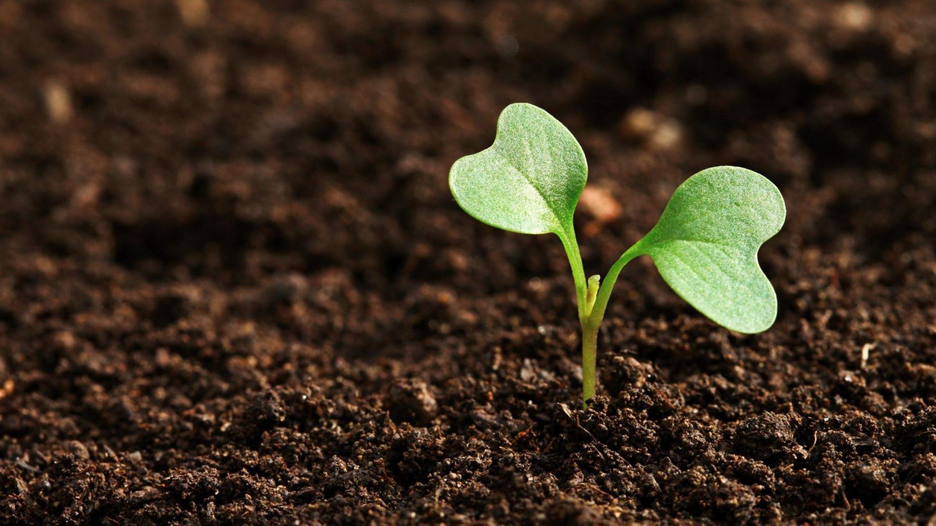 失敗は成長への種まき